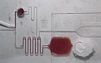 Lab-on-chip prototypes with microfluidic structures